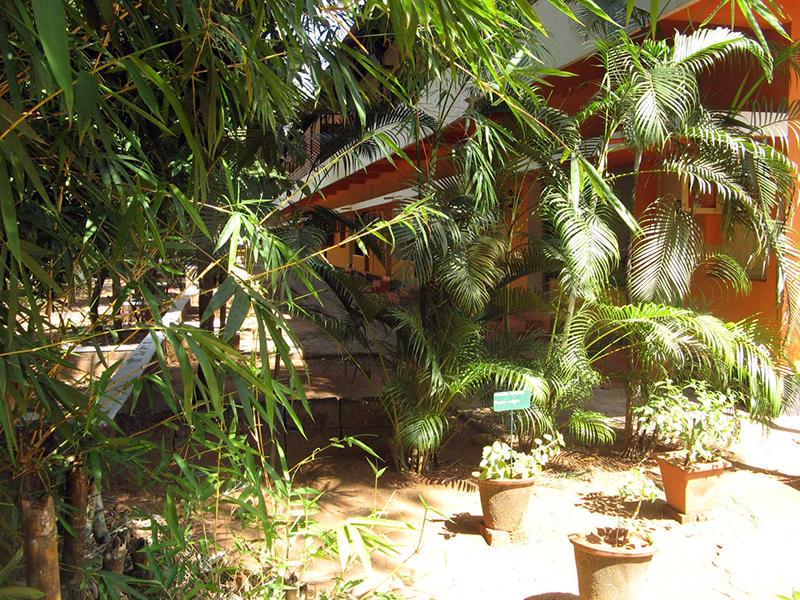 Herbgarden rooms Rajah